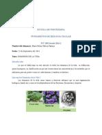 Dominios de La Vida-biologia Celular