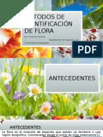 Metodos de Inventario de Flora