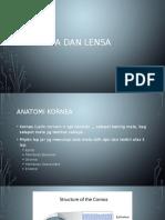 Kornea Dan Lensa
