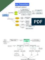 mapas conceptuales... Inmunología