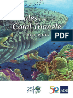Coral Triangle Phi
