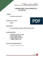 g2 Toledo Informe Peso Específico de Sólidos 1 c