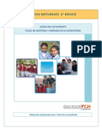 6to_Estudiante_Flujo_materia_energia_ecosis.pdf