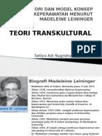teori transkultur