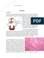 Resumen Hipotiroidismo Gabriel López-Martín Herrera