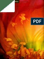 plugin-La-geometria-secreta-de-la-vida.pdf
