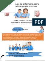 Profesionales de Enfermería Como Gerente de Su Propia