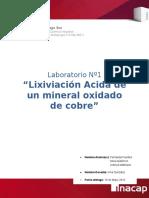Informe Mineralurgia.docx