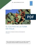 Estudio Producto Tuna