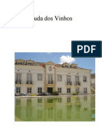 Arruda dos Vinhos- Estudo de caso 11ª ano - geografia A