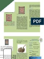 El Cemento Tipo Portland Se Divide en Cinco Categorías Normadas Por Las Especificaciones Del ASTM de Normas APRA El Cemento Portland