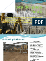 Fundatii Speciale.pptx