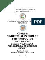 57054028-Informe-2-Queso-de-Cerdo-s-r.docx