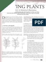 Dibujar plantas.pdf