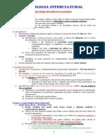 Psicologia Intercultural - Célia Silva (1)