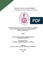 Productividad anacocha.pdf
