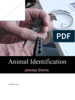 Animal_Identification.pdf