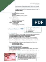 Tema 19 - Tumores Vasculares, Histiocíticos y de Origen Incierto
