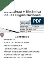 Estructura y Dinámica Organizacional (2)