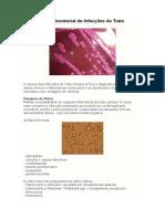 Diagnóstico Laboratorial de Infecções Do Trato Urinário