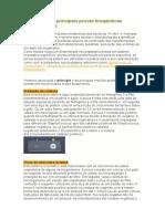 Princípios Das Principais Provas Bioquímicas Bacteriológicas