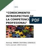ACTIVIDAD Nº1 Prácticas Profesionales