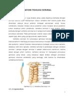 Anatomi Fisiologi Servikal