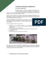 chavimochiic (1)