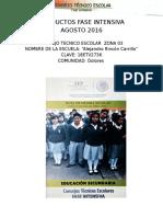 Fase Intensiva Dolores, Del Nayar 2016-2017