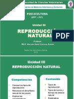 3_REPRODUCCIÓN._PPT[1]