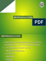 UNIDAD_6__REPRODUCCION[1]