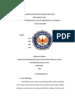 laporan anorganik.rtf
