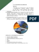 Tipos y Causas de La Contaminacion Ambiental