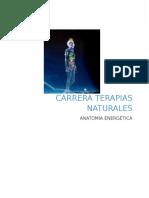Paper Anatomia Energética