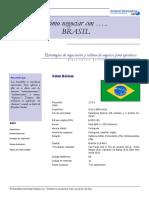 Cómo Negociar Con Brasil