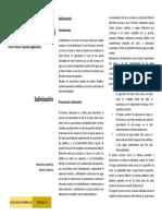 B3_Leaflet_ES.pdf