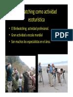 Birdwatching Ecoturismo