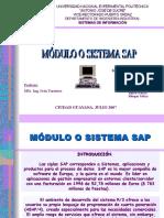 Modulo o Sistema Sap Presentacion Powerpoint