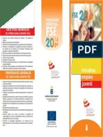 Anexo Vii Tríptico FSE IEJ  2014 2020