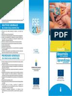 Anexo VII Tríptico FSE POR 2014 2020