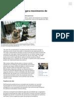 Abandono de Animais Gera Movimento de Caçadores Urbanos _ Gazeta Russa