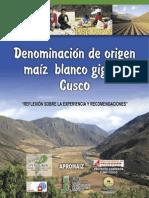 DENOMINACIÓN DE ORIGEN DE MAÍZ BLANCO GIGANTE
