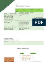 Matriz Resumen de Causas.docx