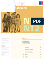 NT1-NT2