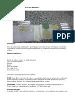 relatorio de microbiologia.docx