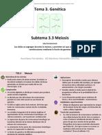 3_3_Meiosis