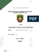 Seguridad y Proteccion de Dignatario.docx