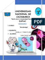Guia De Microbiologia Universidad Nacional de Cajamarca