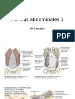 Hernias Abdominales 1