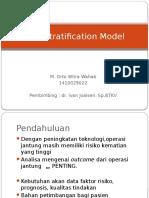 Risk Stratification Model.pptx